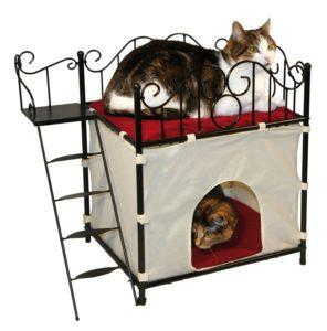 Katzenhaus Kaufen